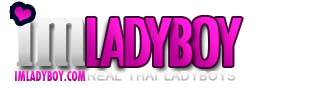 Ladyboy Porn Galleries